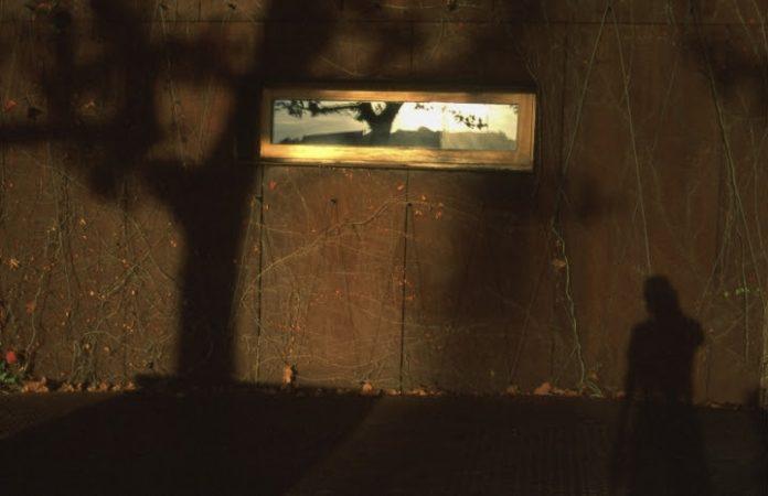 Exposição de fotografia de Wanderson Alves na Galeria Municipal de Torres Vedras