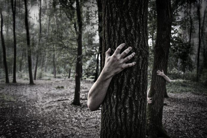 Detidos quatro cidadãos suspeitos de integrarem rede de tráfico humano