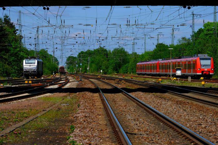 Comissão da Linha do Oeste critica atrasos na eletrificação e supressão de comboios