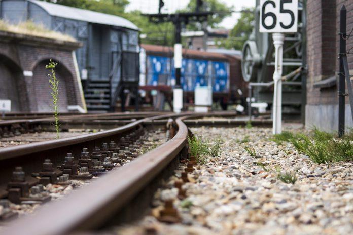 Lançado concurso de 68,5ME para modernizar parte da Linha do Oeste