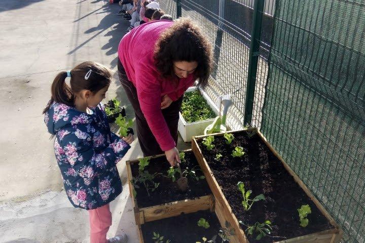Projeto de hortas pedagógicas implementado em 13 escolas do Concelho