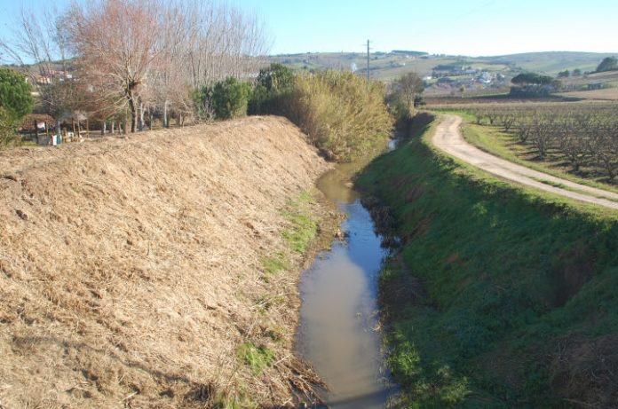 Linhas de água do Concelho de Torres Vedras têm sido limpas e desobstruídas