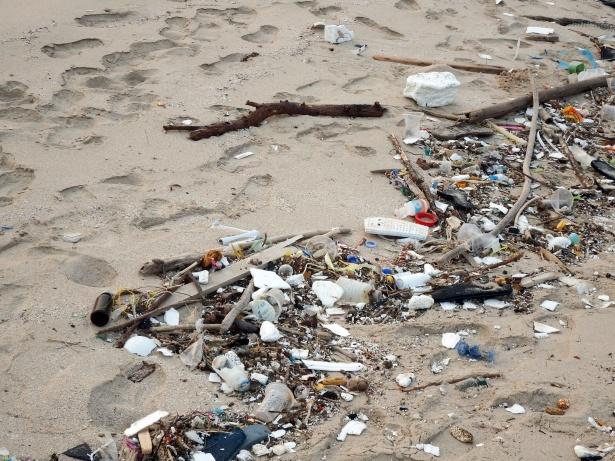 É amanhã o Dia Nacional de Limpeza de Praia em Santa Cruz