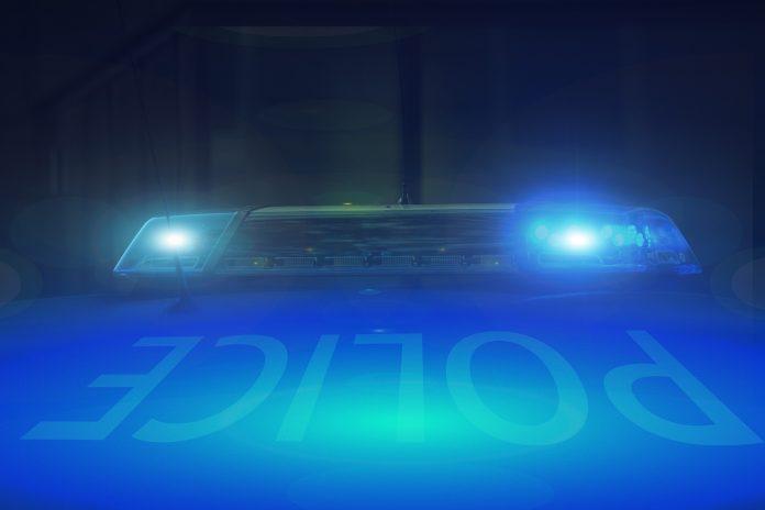 Prisão preventiva para homicida de mulher encontrada numa mala em Arruda dos Vinhos