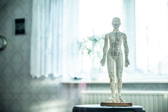 Torres Vedras recebe primeiro Congresso de Osteopatia Clássica