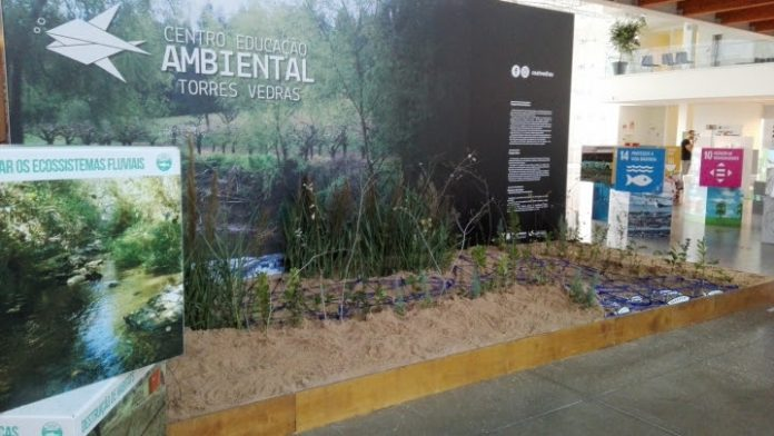 Torres Vedras marcou presença no GreenFest