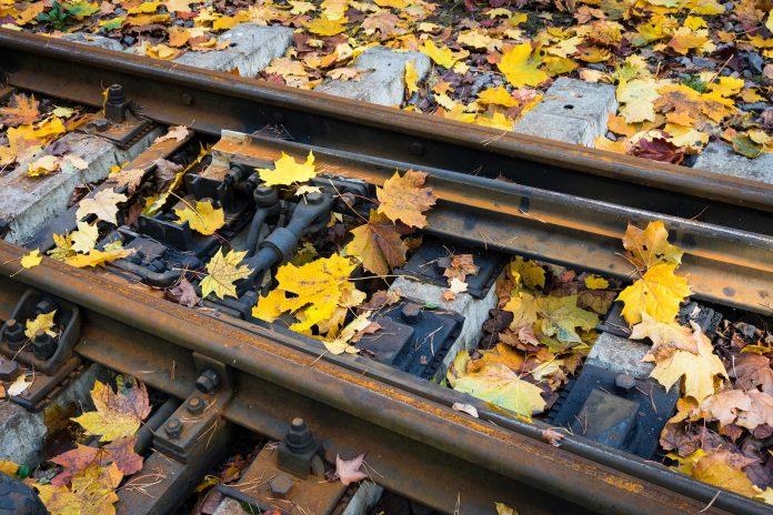 Governo admite atrasos mas afasta cancelamentos no plano ferroviário 2020