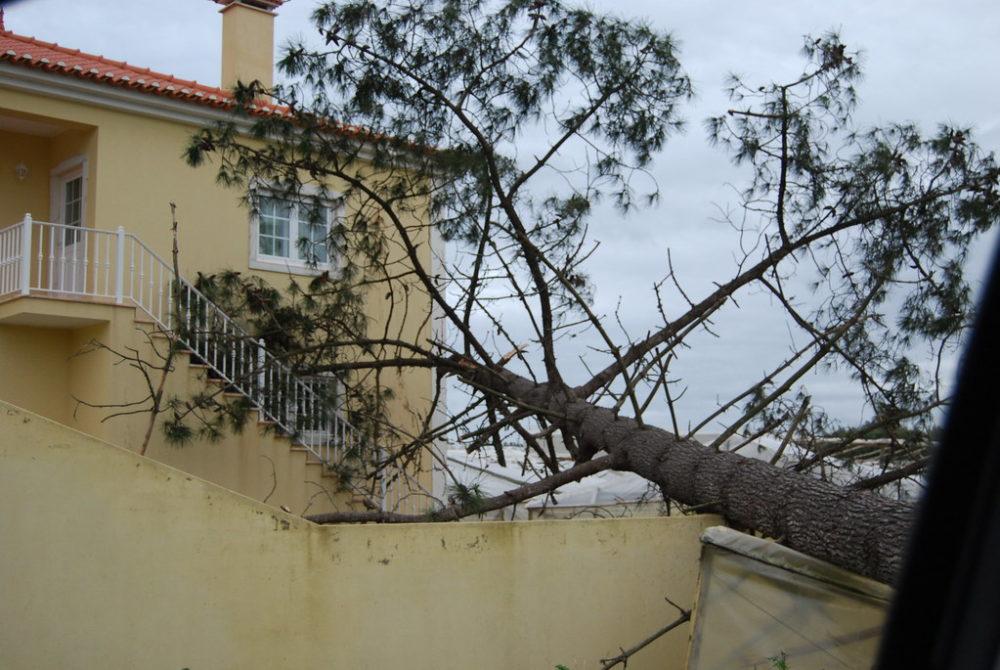 """""""Quando o vento soprou mais forte"""" - exposição relembra o temporal de 23 de dezembro de 2009"""