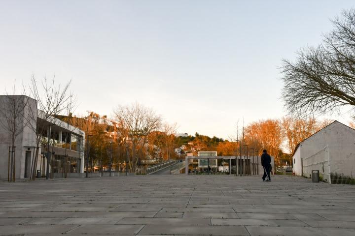 Já é permitida a circulação de canídeos na Praça Dr. Alberto Manuel Avelino