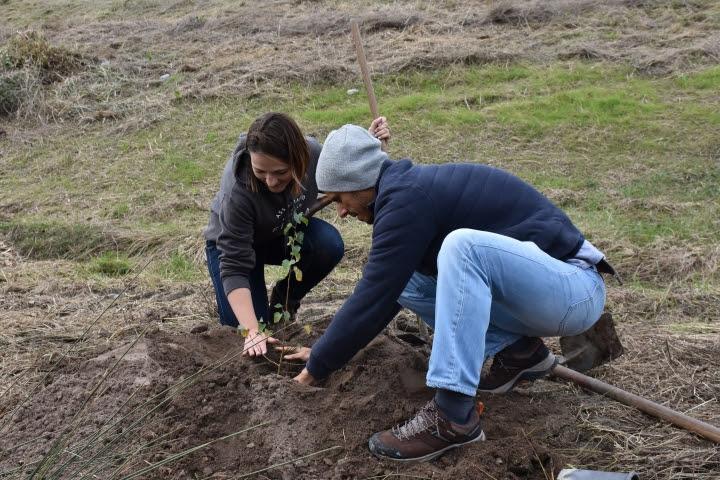 Ação de limpeza e florestação na Ribeira da Conquinha este domingo