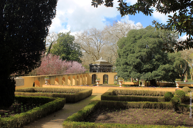 MAFRA: Município reabriu parques jardins públicos