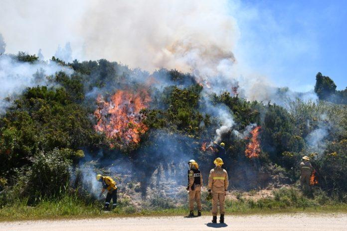 Ações de fogo controlado junto a Almagra e na Serra do Socorro