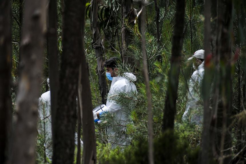 Corpo da criança de Peniche encontrado na Serra D'el Rei tapado por arbustos