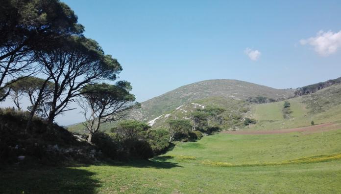 OESTE: Serra do Montejunto comemora 21 anos de paisagem protegida
