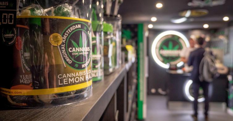 Abriu uma loja de Cannabis em Torres Vedras